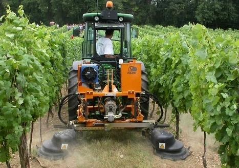 Se convertir au bio, de la vigne à la bouteille - haut courant | Winemak-in | Scoop.it