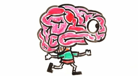 Watch: 7 Myths About the Human Brain Debunked | Bazaar | Scoop.it
