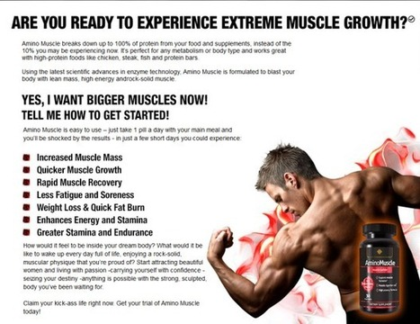 Amino Muscle | How To Build Muscle With Amino Muscle? | Scoop.it