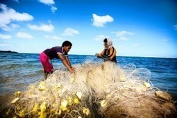 Economic growth, investment, confidence and poverty reduction in Fiji: semi-rational exuberance? | Devpolicy Blog from the Development Policy Centre | Fiji EDP | Scoop.it