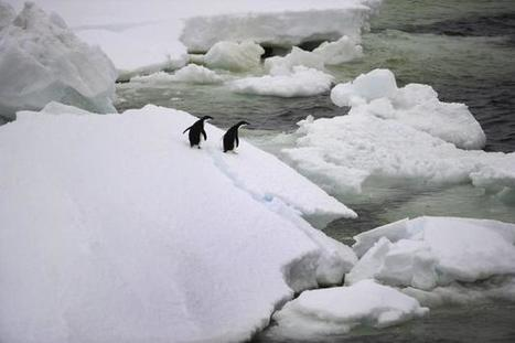 El calentamiento aumenta las nevadas y los ... - EFEverde | Agua | Scoop.it