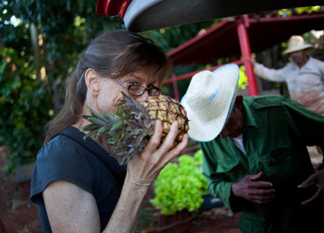 What the U.S. Can Learn From Cuba's Food Revolution | Reese Erlich | Truthdig.com | Sustain Our Earth | Scoop.it