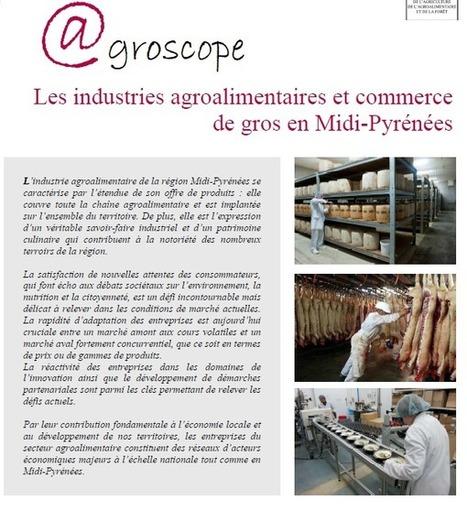 IAA et commerce de gros en Midi-Pyrénées - Agroscope n°7 - DRAAF Midi-Pyrénées | Economie agricole de Midi-Pyrénées | Scoop.it
