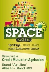 Une école spécialisée dans l'utilisation des algues | Monde Agricole | Scoop.it