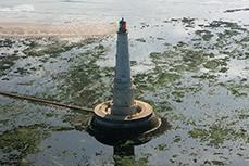 Arrêt des programmes LEADER sur l'Estuaire : fin d'une belle aventure  # SMIDDEST # Développement Durable de l'Estuaire de la Gironde   SMIDDEST   Scoop.it