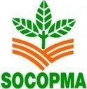 Socopma : 3 mois et demi pour convaincre | Actu Martinique | Scoop.it