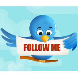 Conseguir seguidores en Twitter es más fácil de lo que parece : Marketing Directo | Medios Sociales | Scoop.it