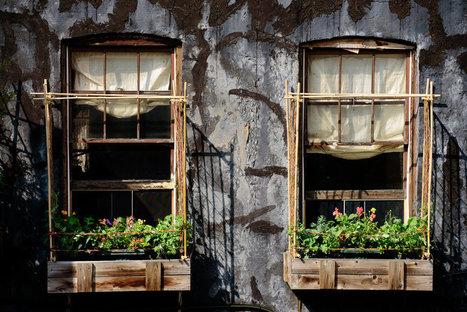 Urban gardening on the third floor | D_sign | Scoop.it