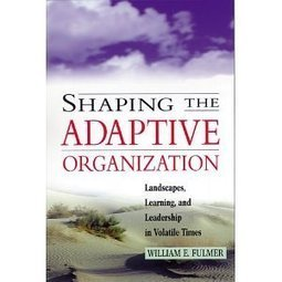 Shaping the Adaptive Organization: Landscapes, Learning, and Leadership in Volatile Times   Exploring complexity   Scoop.it