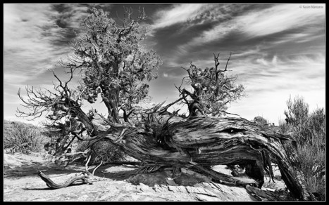 How to take Black and White pictures | Photography Gear News | Scoop.it