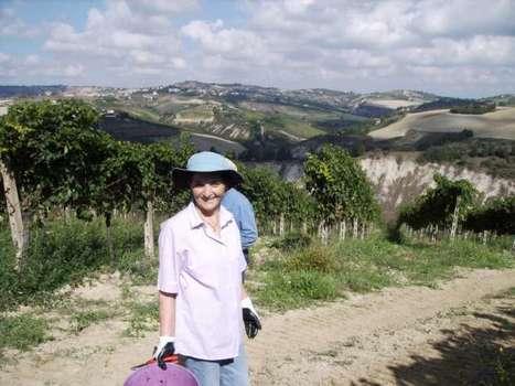 Wine Passion Le Marche: Poderi San Lazzaro. Offida   Wines and People   Scoop.it