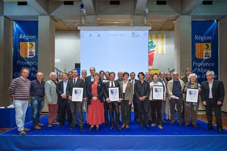 Remise des prix « Collectivités lauréates AGIR pour l'énergie » | Economie Responsable et Consommation Collaborative | Scoop.it