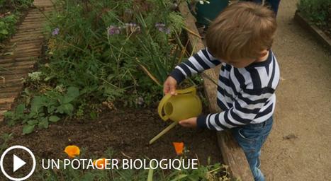 France Écologie Énergie n°17 - La loi biodiversité | Environnement et développement durable, mode de vie soutenable | Scoop.it
