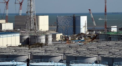 Over 70% of Japanese Against Nuclear Power Plants After Fukushima Tragedy | Fukushima | Scoop.it