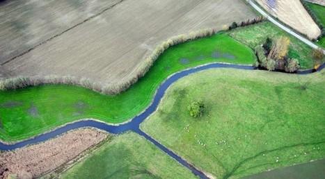 Permacultuur, ideologie of wetenschap?   Zeronaut.be   Permacultuur in Nederland   Scoop.it