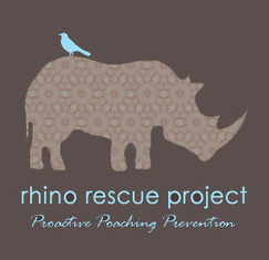 Can Rhino Horn Treatment Prevent Poaching? | What's Happening to Africa's Rhino? | Scoop.it