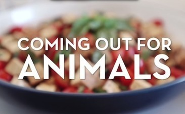 LGBTQ Activists Share How They Came Out For Animal Rights - Care2.com | Animals R Us | Scoop.it