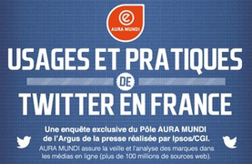 [Infographie] En France, Twitter est davantage un moyen d'information que de communication | Méthodes Webmarketing | CQFDIGITAL | Scoop.it