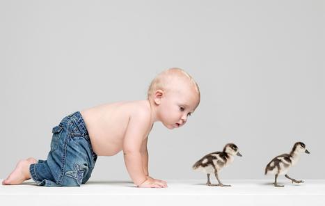 Babies learn to babble like birds learn to sing | Brainfriendly, motivating stuff for ESL EFL learners | Scoop.it