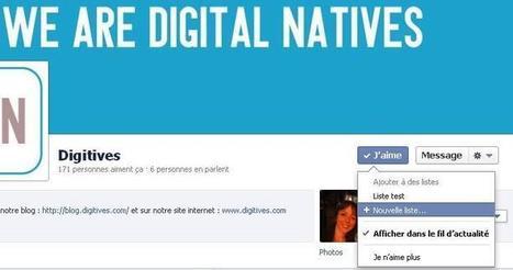 Quand Facebook aussi se lance dans la curation avec les fils d'actualité spécifiques | TICE & FLE | Scoop.it