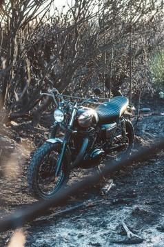 Wishbones – Deus Ex Machina | Custom bikes and Specials | Scoop.it