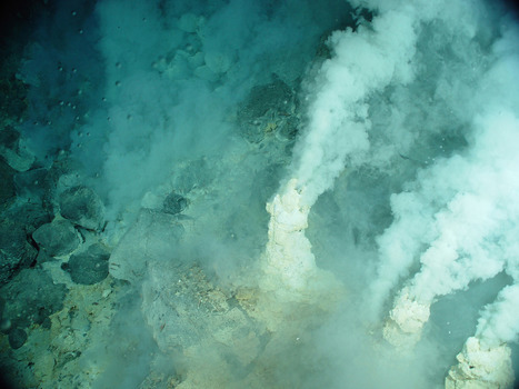 Des chercheurs pensent avoir trouvé l'ancêtre de toute la vie terrestre | Aux origines | Scoop.it
