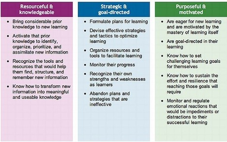 Personalize Learning: The Expert Learner with Voice and Choice | Virtual Pathways | Scoop.it