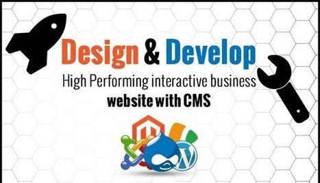 Design & Develop an Effective Website with CMS | Web Design and Development | Scoop.it