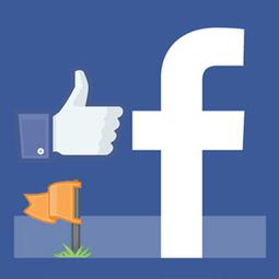 Concours sur page Facebook : Désormais autorisé dans le journal sans application dédiée | MediaBrandsTrends | Scoop.it