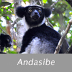 Carnets de voyage à Madagascar | carnets de voyage | Scoop.it