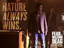 Watch Fear the Walking Dead Episode 3 Online Stream   The Walking Dead Season 6   Scoop.it