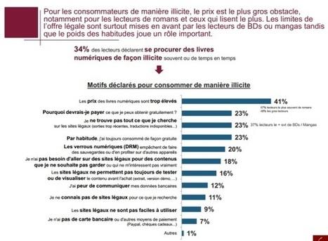 E-book : les Français privilégient le gratuit et l'illicite | François MAGNAN  Formateur Consultant | Scoop.it
