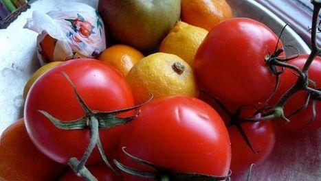 Le 5 ricette della dieta mediterranea facili per mantenersi in linea - BenessereBlog.it (Blog) | WORKING AT HOME | Scoop.it