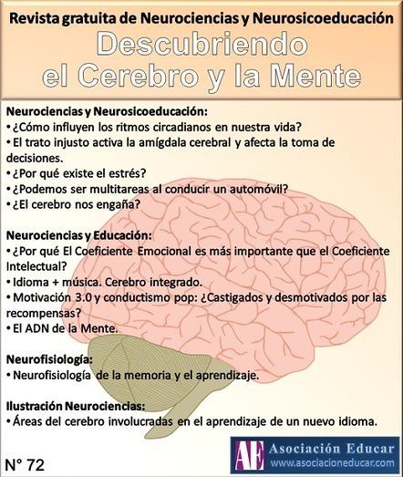 Revista online gratuita de Neurociencias y Neurosicoeducación | Drogas y el cerebro | Scoop.it