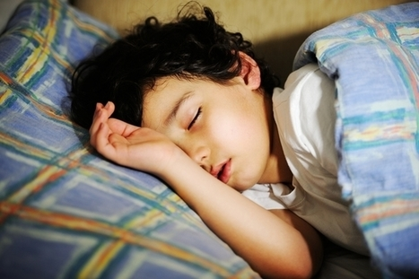 Learning a language? Sleep on it and you'll get the grammar | Second Language | Scoop.it