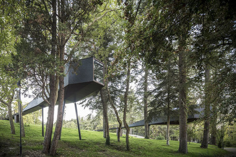 Tree Snake Houses by Rebelo de Andrade Studio in Portugal's Pedras Salgadas Park | sustainable architecture | Scoop.it