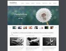 50 responsive portfolio wordpress themes | Free Wordpress Themes | Scoop.it