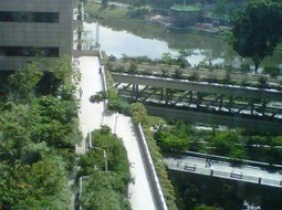 Intensifying Singapore's Green with LEAF | Green Asia Force | Green ideas and Sustainable Building Practices | Scoop.it