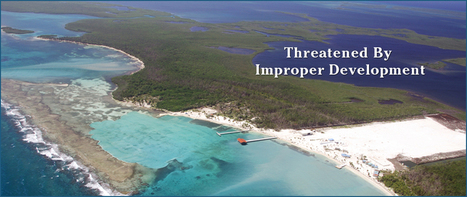 Turneffe Atoll Trust - Belize | Belize in Social Media | Scoop.it
