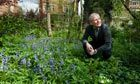 Why city gardens are wildlife havens | 100 Acre Wood | Scoop.it