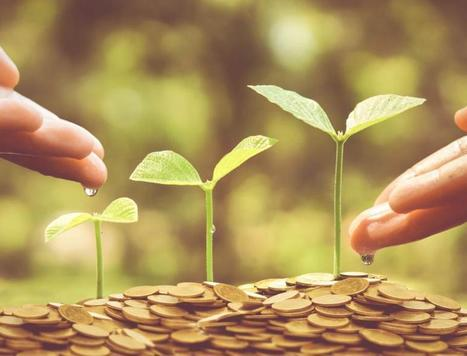 Aligning Maqasid al Shariah and impact investing objectives key to growth of Islamic sector | Inclusive Business in Asia | Scoop.it