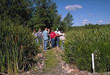 Constructed Wetlands | Artificial wetlands | Scoop.it