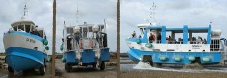 3 moyens de transport insolites   Blog voyage   Actu Tourisme   Scoop.it