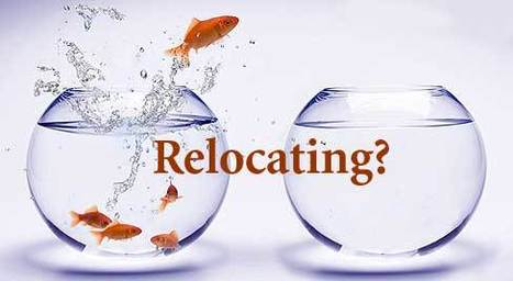 Relocation Service Directory, Relocation Company | PackersMovers24x7 | Scoop.it