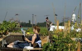 Tempelhof, aéroport du pont aérien de Berlin, devenu paradis des jardiniers | Le BONHEUR comme indice d'épanouissement social et économique. | Scoop.it