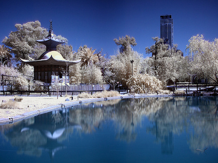 Infrared Photography Brings out the Magic in the Mundane | Designer's Resources | Scoop.it