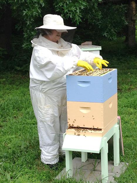 Beekeeping club forming in Kansas - Joplin Globe | Les abeilles ont droit à un futur | Scoop.it