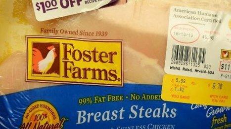 Etats-Unis: près de 300 cas de salmonellose avec du poulet   Food industry, Distribution and Safety   Scoop.it