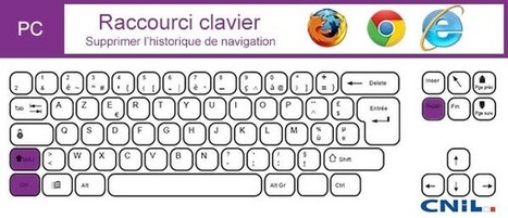 Nettoyer l'historique de navigation, fiche pratique Cnil | 16s3d: Bestioles, opinions & pétitions | Scoop.it