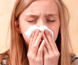 The Best Home Remedies for Relief From Hay Fever - Healing.Answers.com | Better Teas | Scoop.it